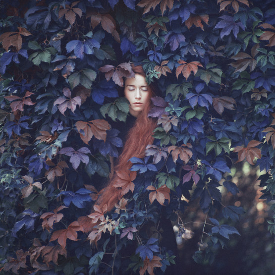 Sabé Masson x Oprisco
