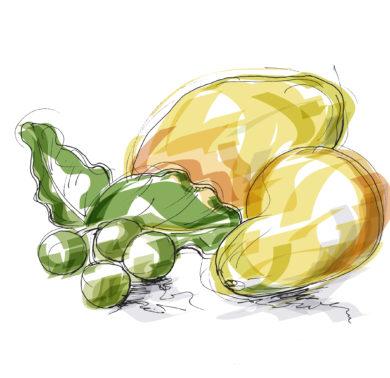 Beurre de Mangue et Huile de Tamanu