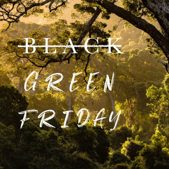 ¡A por el Green Friday!